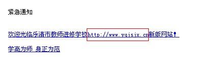 乐清市教师进修学校的网站网址是什么